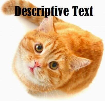 Contoh Descriptive Text Singkat : Hewan