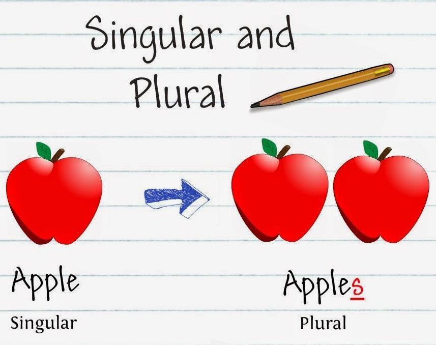 Memahami Singular And Plural Noun (Kata Benda Tunggal Dan Jamak) Dalam Bahasa Inggris