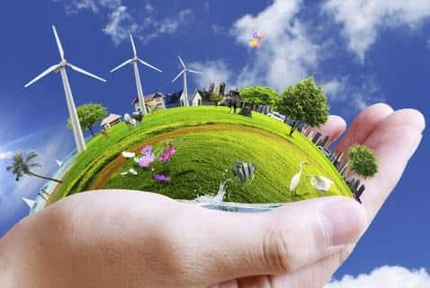 Artikel Bahasa Inggris Tentang Fungsi Lingkungan Hidup