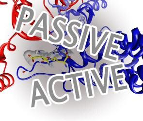 42 Contoh Kalimat Aktif dan Pasif dalam Bahasa Inggris Future Tense Beserta Artinya