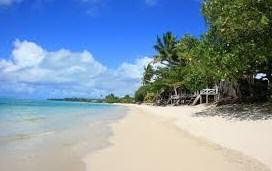 Descriptive Text About Place (Beach) Bahasa Inggris dan Artinya