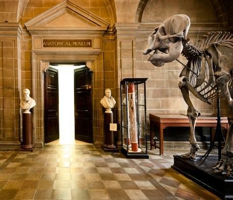 Dialog Percakapan Bahasa Inggris 3 Orang di Museum