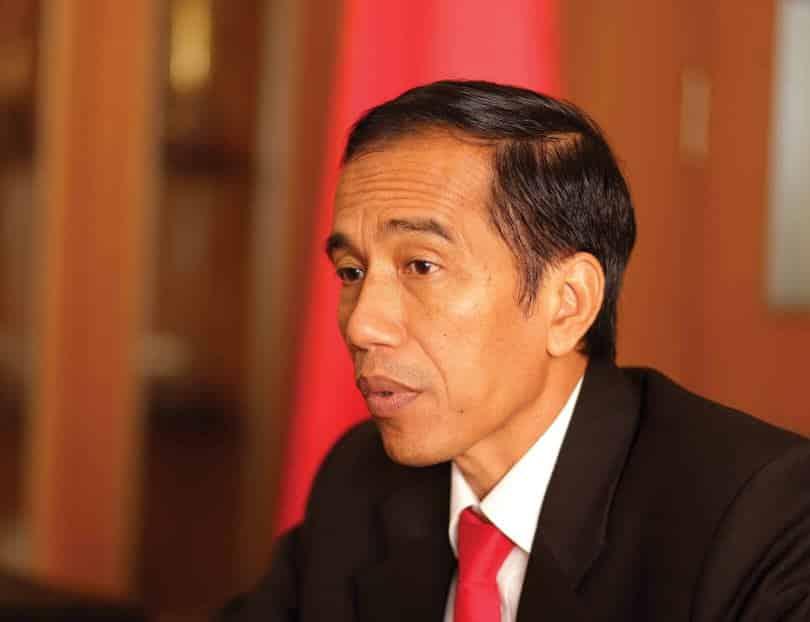 Biografi Jokowi dalam Bahasa Inggris & Artinya